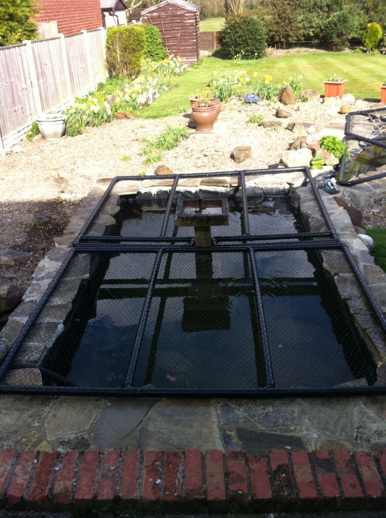 Leaking concrete pond after repair