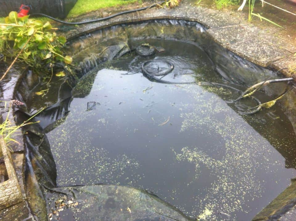 Leaking pond