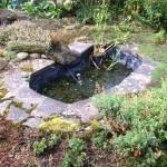 Original Wildlife Pond