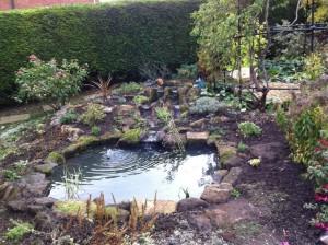 Landscaped wildlife pond