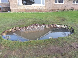 Completed wildlife pond